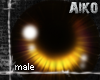 [Aiko]Amber Male Eyes