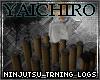 Ninjutsu Training Logs