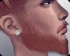 ▲ Prince Beard_Ginger