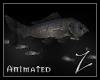 [Z] realistic Fishschool