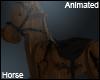 Dark Destinations Horse