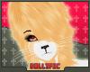 +ID+ Albino Panda H M 1