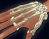 Bone Skeleton Hand M&F