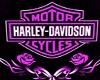 purple harley room