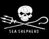 Sea Shepherd Ear Plugs