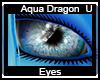 Aqua Dragon Eyes