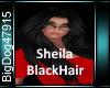 {BD]SheilaBlackHair