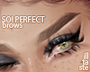 SO! Perfect. brows 06