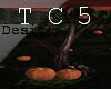 Romantic pumpkin tree