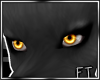 Orng Sane Eyes [FT]