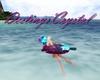 tortue de  plage