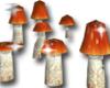 ★ mushrooms