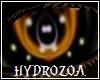 Hydrozoa Eyes