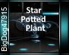 [BD]StarPottedPlant