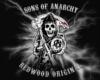 SOA Arkansas Member vest