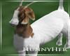H. Goat