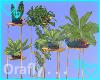 <3 Opal Plant 2