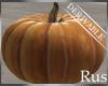 Rus DER Fall Pumpkin
