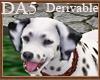 (A) Dalmatian Pet