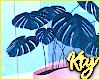 Paradiso Plant