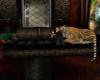 (M) Cheetah Couch v2 ani