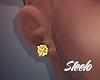 24k Gold Studs