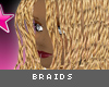[V4NY] Braids Blonde