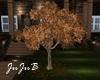Fall Tree animated