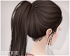 Dark Brown Ponytail