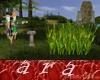 maizal granja
