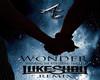 Wonder (Luke Shay) pt2