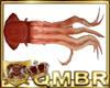 QMBR Atlantis Squid Ani