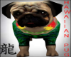 Hawaiian Pug w Sound