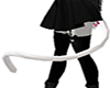 White Furry Cat Tail