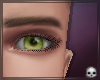 [T69Q] Adrien Eyes