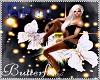 Bree butterflies