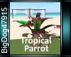 [BD]TropicalParrot