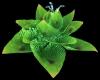Glow Sea Anemone Lotus