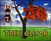 Tree Climb Orange