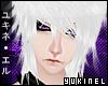 Y|L - Wiz WINTER
