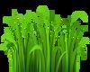 HUGEEE Green Grass