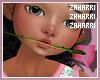 ➸ Rose (pink)
