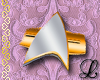 ST badge - F S