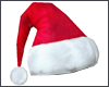 Women's Holiday Hat