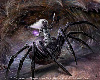 Drow spider