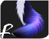 MIDNIGHT - Tail 2