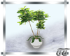 Clinical Planter V2