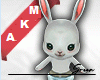 🐰 Dancing Bunny F