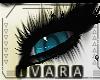 Nami Eyes [F]
