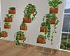 Elle Plant Group